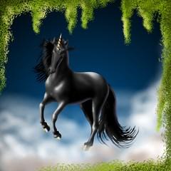 unicorno nero