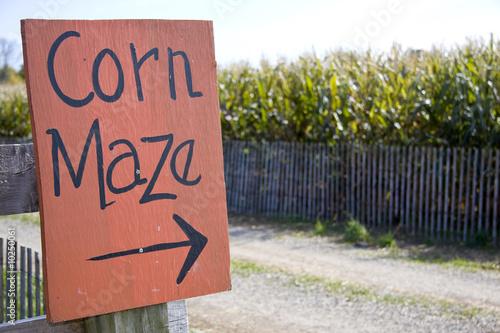 Corn maze sign next to a field of corn in rural america - 10250061
