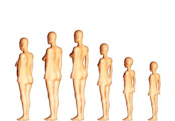 Evolution de l'homme au cours de sa vie