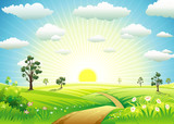 Fototapety Sunny Meadow landscape of vector illustration layered.