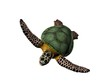 3D illustration of a great sea turtle isolated