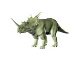 Triceratops an ancient jurassic extinct reptile Illustration poster