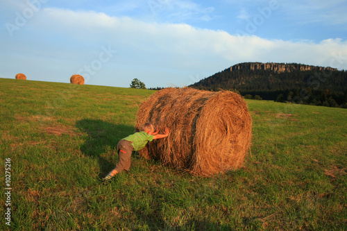 Boy on meadow in mountain