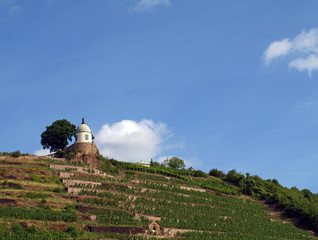 Jacobstein in Radebeul