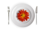 white dish with red flower isolated poster
