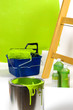 Green painting with ladder, roller brush, bucket, pigments