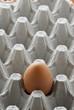 Uovo nell imballo