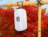 A Japanese Kiku flower show in a botanical garden. poster