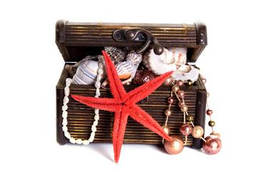 trunk sea treasure