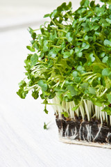Fresh cress on a table