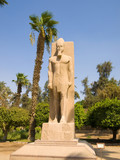 Statue of Ramses II. Memphis open-air museum, Egypt. poster