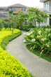 Garden with footpath and plant in a residential district
