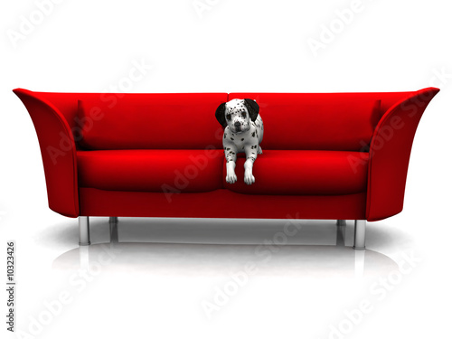 A cute dalmatian puppy in a red sofa.