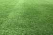Artificial grassy covering, green background