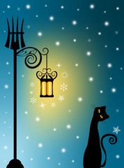Cat and old Lantern on Snowy Night