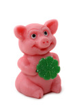 Good luck pig isolated on white background poster