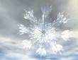 Schneeflocken 081109 2