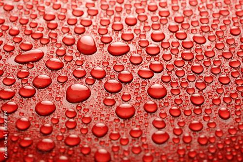 Water drops - 10361893