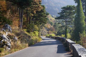 Narrow road to mountains