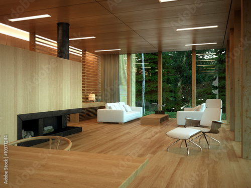 Minimalist wood-panelled lounge in private home