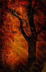 Dark background with a silhouette of a tree
