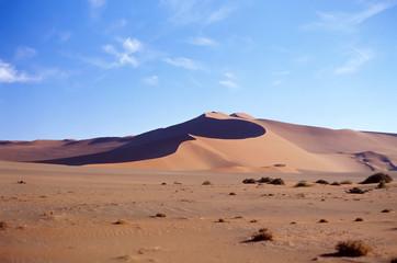 Panoramic view on sand desert