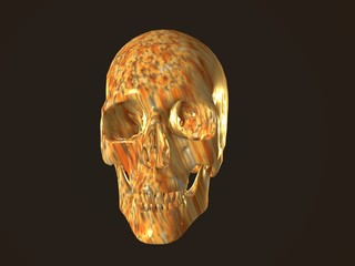 3D illustration of a human skull isolated