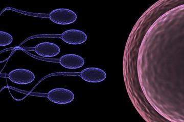 Sperm Attack