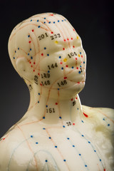 Close-up of mannequins head used for acupuncture