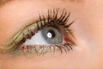the human wide open gray eye macro