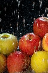 manzanas20