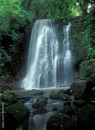 Small deep forest waterfall in sunny summer day - 10439058