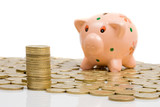 Piggy-bank and currencies with focus on first plane poster