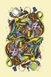 roleta: abstract illustration