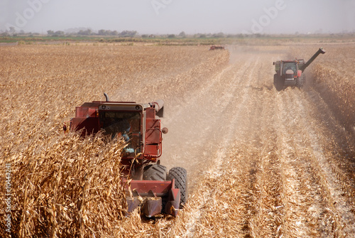 Canvas Granen Combines harvesting corn, San Joaquin Valley, California