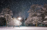 Trees covered with snow, dark sky and lantern through snowing.