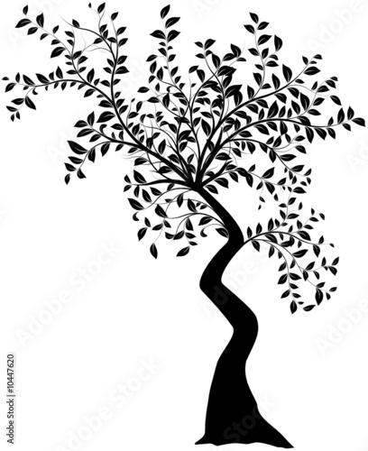 silhouette d'arbre stylisé vectoriel sur un fond blanc - 10447620