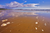 Wide sandy beach and the rests of sea foam  of water poster
