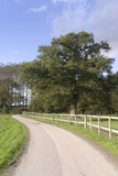 country lane umberslade warwickshire midlands england uk poster