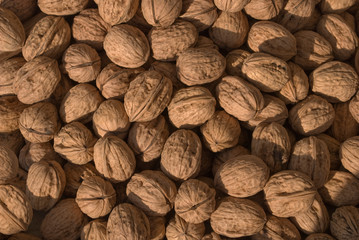 Healthy Walnuts Found at an Outdoor Market