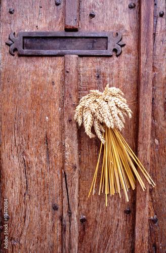 bouquet de blé sur la porte en bois