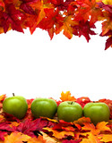 Fall leaves with green apples on white background, fall scene