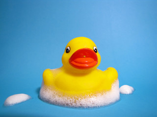 Rubber Duck And Suds