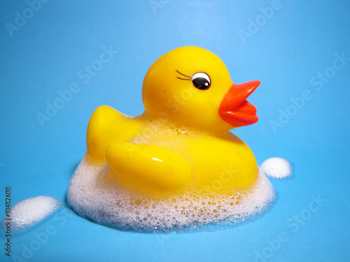 Yellow Rubber Duckie On Blue