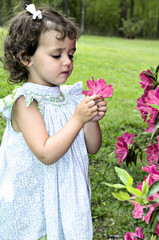 Little girl outdoors admiring a perfect azalea.