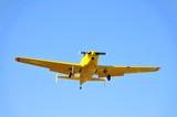 Yellow Plane Overhead poster
