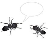 Two ants talking to each other concerning soil relocation poster