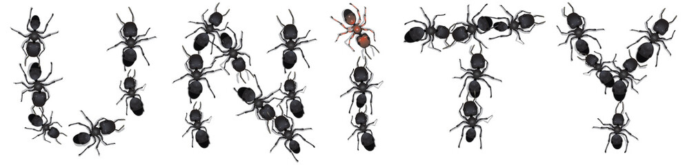 A group of worker ants assembled to spell the word Unity.