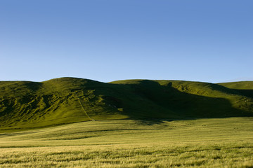 Farmlands and rolling hills in rural Hawke's Bay, New Zealand