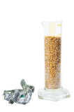 two crushed dollar near beaker with corn poster